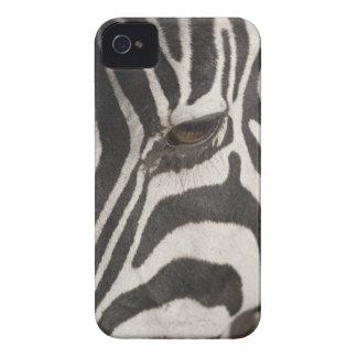 'Africa, Tanzania, Ngorongoro Conservation Area' iPhone 4 Cases