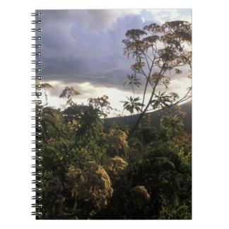Africa, Tanzania, Ngorongoro Conservation Area, Notebook