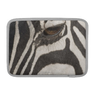 Africa, Tanzania, Ngorongoro Conservation Area Sleeve For MacBook Air