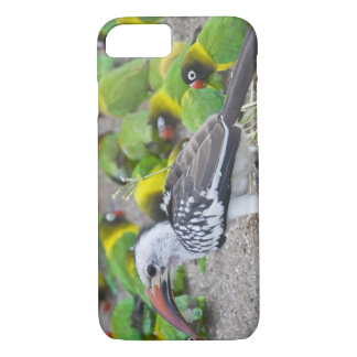 Africa. Tanzania. Red-billed Hornbill and iPhone 8/7 Case