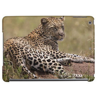 Africa, Tanzania, Serengeti. Leopard