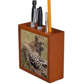 Africa, Tanzania, Serengeti. Leopard Desk Organiser