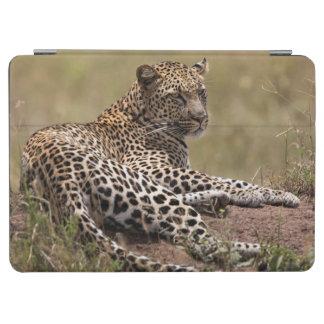 Africa, Tanzania, Serengeti. Leopard iPad Air Cover