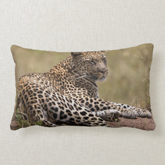 Africa, Tanzania, Serengeti. Leopard Lumbar Pillow