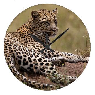 Africa, Tanzania, Serengeti. Leopard Wall Clocks