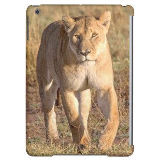 Africa, Tanzania, Serengeti. Lion And Lioness