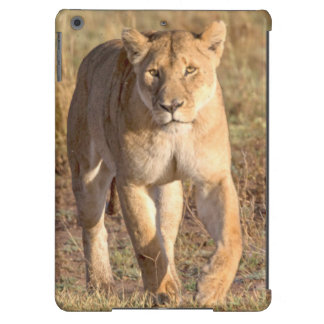 Africa, Tanzania, Serengeti. Lion And Lioness Case For iPad Air