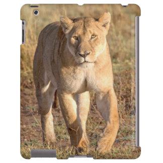 Africa, Tanzania, Serengeti. Lion And Lioness iPad Case