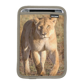 Africa, Tanzania, Serengeti. Lion And Lioness iPad Mini Sleeve