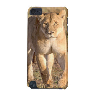 Africa, Tanzania, Serengeti. Lion And Lioness iPod Touch 5G Cases