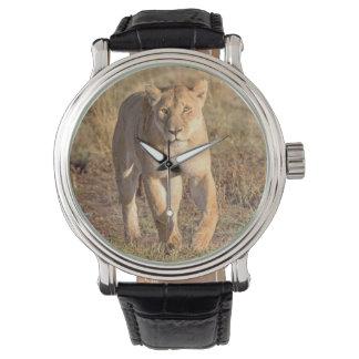 Africa, Tanzania, Serengeti. Lion And Lioness Watch