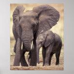 Africa, Tanzania, Tarangire National Park. 2