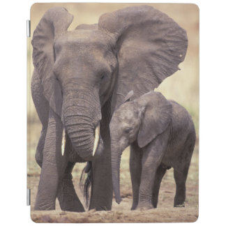 Africa, Tanzania, Tarangire National Park. 2 iPad Cover