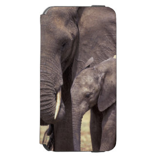 Africa, Tanzania, Tarangire National Park. 2 Incipio Watson™ iPhone 6 Wallet Case