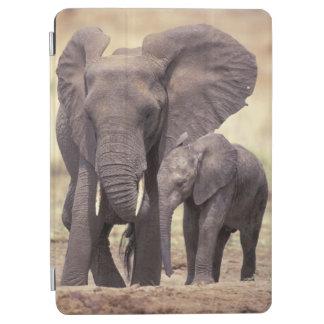 Africa, Tanzania, Tarangire National Park. 2 iPad Air Cover