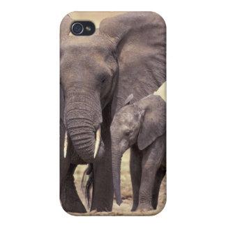 Africa, Tanzania, Tarangire National Park. 2 iPhone 4 Cover