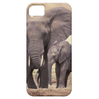 Africa, Tanzania, Tarangire National Park. 2 iPhone 5 Cover