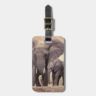 Africa, Tanzania, Tarangire National Park. 2 Luggage Tag