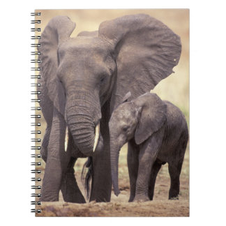 Africa, Tanzania, Tarangire National Park. 2 Notebook