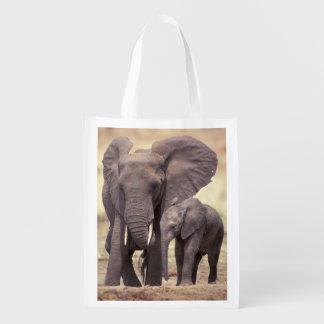 Africa, Tanzania, Tarangire National Park. 2 Reusable Grocery Bag