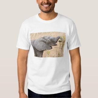 Africa. Tanzania. Young Elephant at Tarangire Shirt