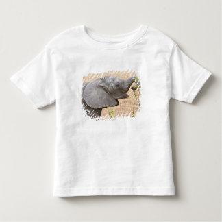 Africa. Tanzania. Young Elephant at Tarangire Toddler T-Shirt