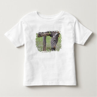 Africa. Tanzania. Zebra colt at Ngorongoro Toddler T-Shirt