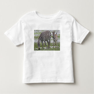 Africa. Tanzania. Zebra mother and colt at Toddler T-Shirt