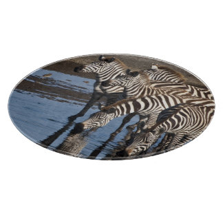 Africa. Tanzania. Zebras drinking at Ndutu in Cutting Board