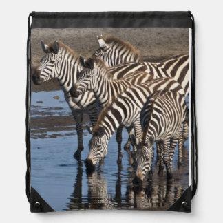 Africa. Tanzania. Zebras drinking at Ndutu in Drawstring Bag