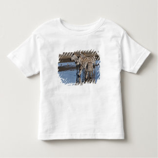Africa. Tanzania. Zebras drinking at Ndutu in Toddler T-Shirt