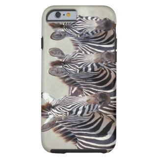 Africa, Tanzania, zebras Tough iPhone 6 Case