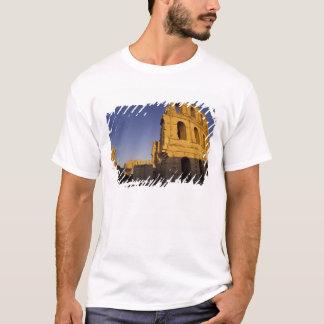 Africa, Tunisia, El Jem. Ruins of a Roman T-Shirt