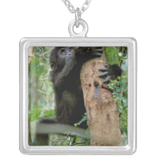 Africa, Uganda, Bwindi Impenetrable Forest Silver Plated Necklace