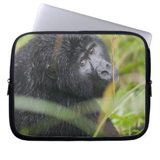 Africa, Uganda, Bwindi Impenetrable National 2 Laptop Sleeve