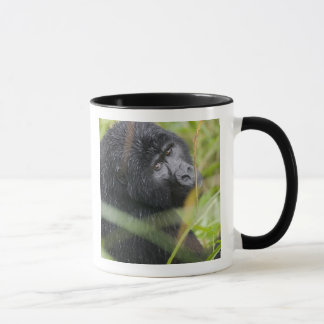 Africa, Uganda, Bwindi Impenetrable National 2 Mug