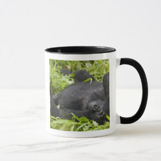 Africa, Uganda, Bwindi Impenetrable National 3 Mug