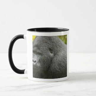 Africa, Uganda, Bwindi Impenetrable National 4 Mug