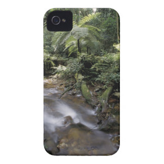 Africa, Uganda, Bwindi Impenetrable National 5 iPhone 4 Case-Mate Case