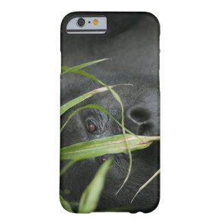 Africa, Uganda, Bwindi Impenetrable National 6 Barely There iPhone 6 Case