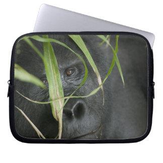 Africa, Uganda, Bwindi Impenetrable National 6 Laptop Sleeve