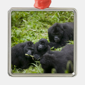 Africa, Uganda, Bwindi Impenetrable National 7 Christmas Ornament