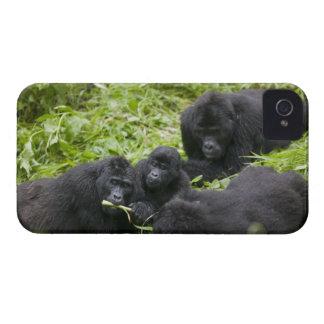 Africa, Uganda, Bwindi Impenetrable National 7 iPhone 4 Case-Mate Case