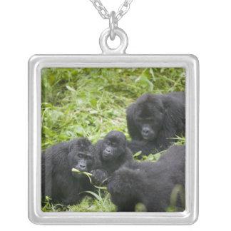 Africa, Uganda, Bwindi Impenetrable National 7 Silver Plated Necklace