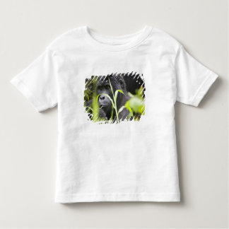 Africa, Uganda, Bwindi Impenetrable National Toddler T-Shirt