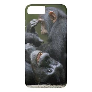 Africa, Uganda, Kibale Forest Reserve, Juvenile 2 iPhone 8 Plus/7 Plus Case