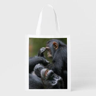 Africa, Uganda, Kibale Forest Reserve, Juvenile 2 Reusable Grocery Bag
