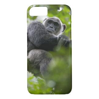 Africa, Uganda, Kibale Forest Reserve, Portrait 2 iPhone 8/7 Case