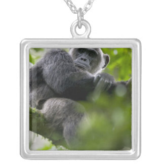 Africa, Uganda, Kibale Forest Reserve, Portrait 2 Silver Plated Necklace