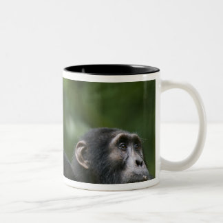 Africa, Uganda, Kibale Forest Reserve, Portrait Two-Tone Coffee Mug